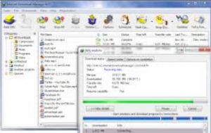 IDM Serial Key + Serial Number 2021 with Crack Download {100%}